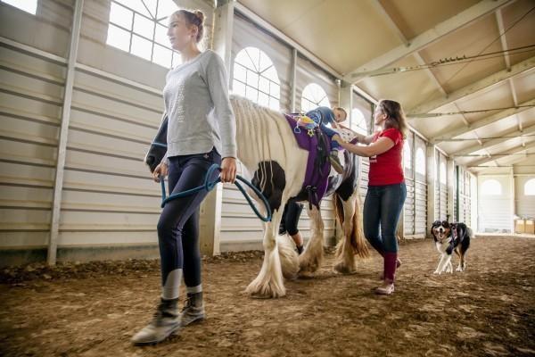 Intervencie s asistenciou koní Hipoterapia